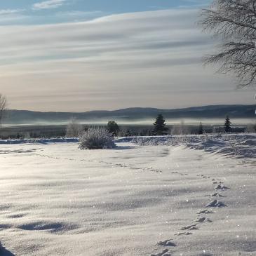 Det vita snötäcket har lagt sig över Raggsjöliden